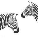 vector-zebra_zyka1jwu_l